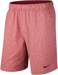 Nike Dry Fit Short pour Homme